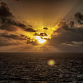 Morning Glory by Judy Hall-Folde