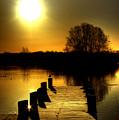 Morning Glory by Kim Shatwell-Irishphotographer