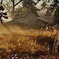 Morning Glory by Lori Mellen-Pagliaro