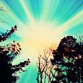 Morning Glow by Johari Smith