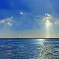 Morning Has Broken Galveston Bay by Jorge Gaete