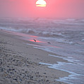 Morning Haze by  Newwwman