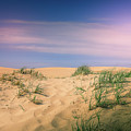 Morning Haze On Sand Dunes by Dan Sproul
