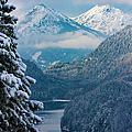 Morning In Bavaria by Brian Jannsen