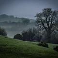 Morning In The Irish Mist by James Truett