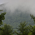 Morning Mist Bluestone State Park West Virginia by Teresa Mucha
