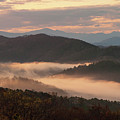 Morning Mist Four by Bob Phillips