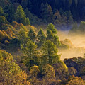 Morning Mist In The Trossachs by John McKinlay
