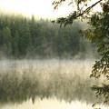 Morning Mists by Idaho Scenic Images Linda Lantzy