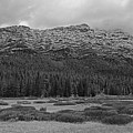 Morning Mountains In Yellowstone by Vincent Wille