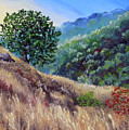 Morning On A Hilltop by Laura Iverson