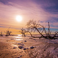Morning On Boneyard Beach by Steven Ainsworth