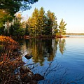 Morning On Chad Lake 4 by Larry Ricker