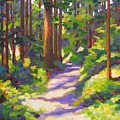 Morning On The Trail 3 by Mary McInnis