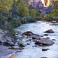Morning On The Virgin River by Bob Camp