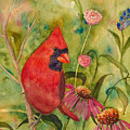 Morning Perch In Red by Renee Chastant