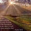 Morning Psalms Scripture Photo by JerryAnn Berry