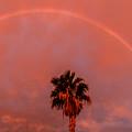 Morning Rainbow by Robert Bales