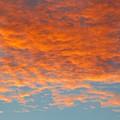 Morning Sky by Carl Miller
