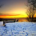 Morning Sunrise by Svetlana Sewell