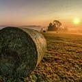Morning Sunrise by Wayne Maris