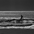 Morning Surfer by Sheila Smart Fine Art Photography