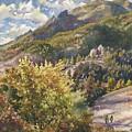 Morning Walk At Mount Sanitas by Anne Gifford