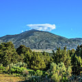 Morning View Of Albion Mountains by Robert Bales