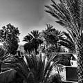 Morocco by Chroma Photographer