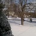 Morris County New Jersey Snowstorm Of 12-26-10 by Carol Wisniewski