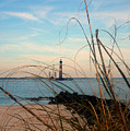 Morris Island Lighthouse In Charleston Sc by Susanne Van Hulst