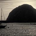 Morro Bay I Toned by David Gordon
