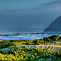 Morro Rock And Beach by Steven Ainsworth