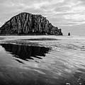 Morro Rock II by Margaret Pitcher