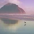 Morro Rock by Kevin Bergen