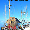 Morro Rock Morro Bay California by Barbara Snyder