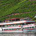 Mosel River Cruise  by Anthony Dezenzio