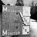 Mosquito Monitor by David Lee Thompson
