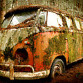 Moss Covered 23 Window Bus by Michael David Sorensen
