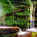 Moss Falls - 2981-2 by Paul W Faust - Impressions of Light