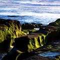 Moss Glow by Robert McKay Jones