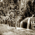 Mossbrae Falls Shasta Springs Circa 1908 by California Views Archives Mr Pat Hathaway Archives