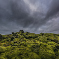 Mossy Eruption  by Michael Ver Sprill
