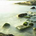 Mossy Rocks On Shoreline by Nick Jene