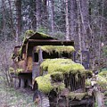 Mossy Truck by Gene Ritchhart
