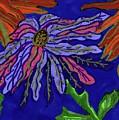 Most Unusual Poinsettia In A Midnight Blue Sky by Elinor Helen Rakowski