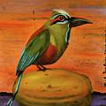Mot Mot On A Papaya by Leah Saulnier The Painting Maniac