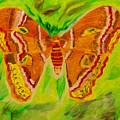 Exuberant Coral Moth by Meryl Goudey