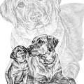 Mother Labrador Dog And Puppy by Kelli Swan
