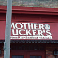 Mother Tuckers by Frank DiMarco